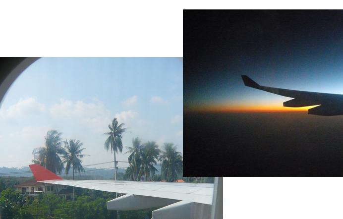 voyage, avion sans gluten,missnogluten.com