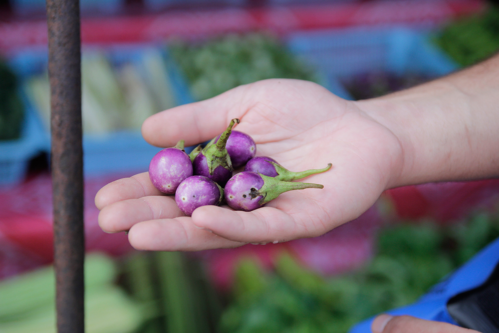 petites aubergines